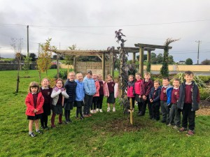Tree planting Junior room