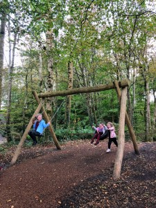 turlough playground 6