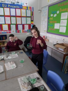 Science week 2